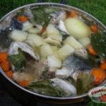 Уха: история, происхождение названия и разновидности этого блюда